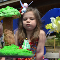 Tinkerbell party, fairy party